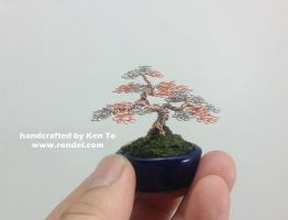 Two Tone Mame Bonsai Tree by Ken To by KenToArt