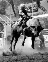 Rockley Rodeo 11 by engaged-vacancy