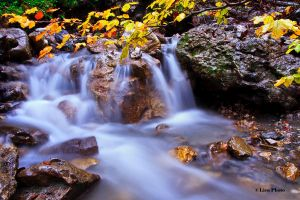 Autumn waterfall by lica20