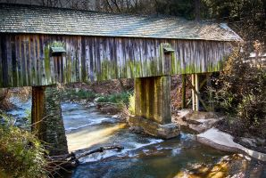 Covered Bridge by dx