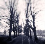 the path by Valdoo