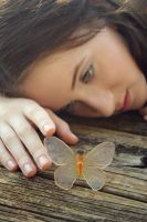 butterfly dreams2 by fae-photography