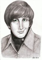 Howard Wolowitz (Big Bang Theory) by Pikamine