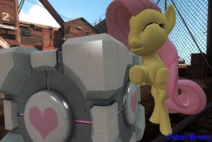 Fluttershy Hugging the Companion Cube by CobaltBrony