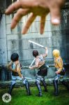 Shingeki no Kyojin: Not the Weapon Nor the Skill by AnyaPanda