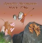 Autumn Stock PNG by JossetteHermanni