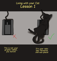 Cat Lesson #1 by Ukikun