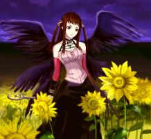 Rosario+Vampire-Witch's hill by oo0Misa0oo