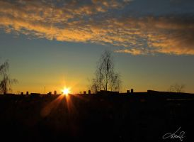 GOOD MORNING by wenr