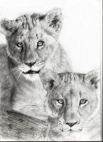 lion brothers by MADMANHales
