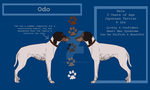 Odo Reference Sheet by jellybean12365