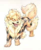 Arcanine by FoolishLittleMortal