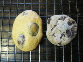 Homemade chocolate chip vs store made cookie by Lark-Catalpa-Royal8