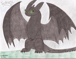 Toothless by FlygonPirate