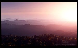 Rise Above - Vue 7 test II. by 00AngelicDevil00