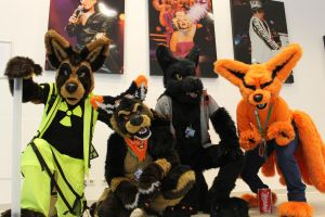 TheKareliaFursuits at EF20 by TheKareliaFursuits