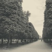 long way by Clergna