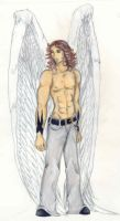 Hayden-Male Angel by LadyGhostDuchess