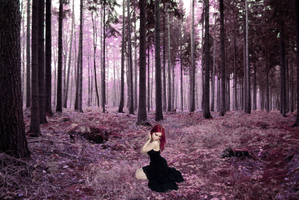Violet Forest by TriNeaX