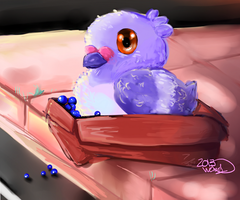 Pidove in a Box by WendySakana