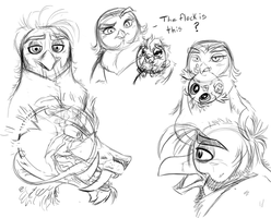 A Bunch of Unrelated Anger Birb Pics by KasaraWolf