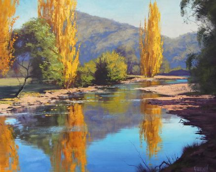 Autumn Reflections Tumut by artsaus