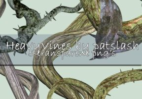 Vines vol.1 by galleryofdreams by TW3DSTOCK
