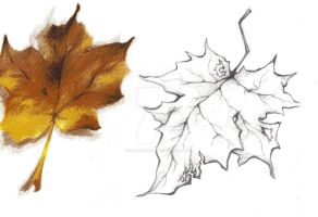 Autumn leaves by HollowCandy