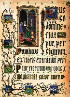 Illuminated Manuscript by oprion