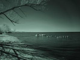 Charles Daly Beach 2(IR) by RuralCrossroads360