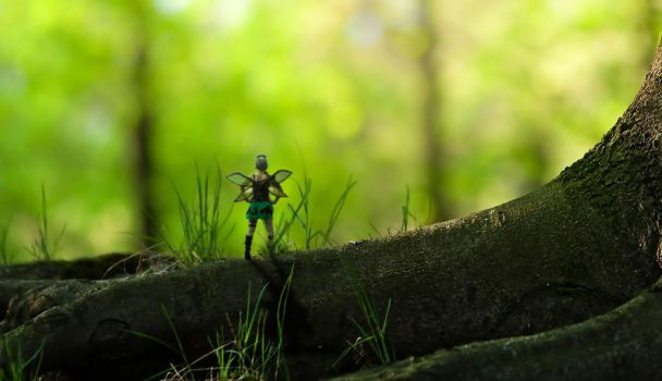 steampunk tinkerbell in the forest by geonicle