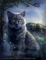 Chartreux by BlackMysticA