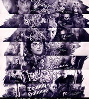 Harry Potter books banner by Miss-Chili