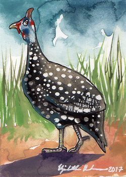 South African ACEOs: Helmeted guinea fowl by Redwall151