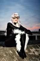 BlackCat on the Roof - Cosplay by Yukilefay