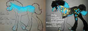 Foals Blue and Green by Shelby-3000