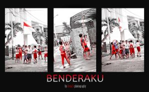 My Flag INDONESIA by Denals