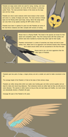 Fleetwit Basic Information Sheet by Whitelupine