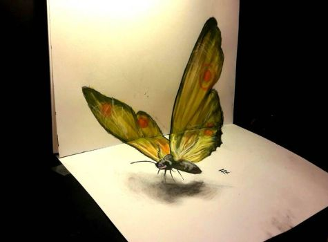 3d butterfly (video link below) by Yakise