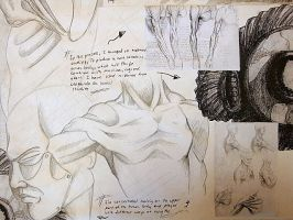 Extract Of a Study by Chicodeleita
