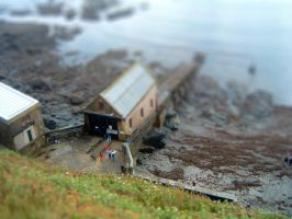Tiltshift Project 001 by Salumet