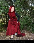 Rose Red17 by faestock