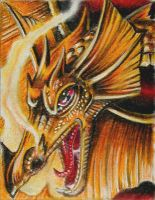 ATC: 'Gold Dragon' by catbones