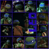 TMNT:: Leo: Collage by Culinary-Alchemist