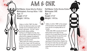 AM and CNR Ref Sheet by bird-kings