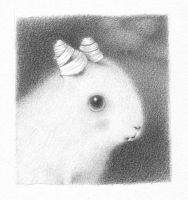 bunny two by reneefrench