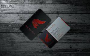 Business Card V.2 by Arctic-Affinity