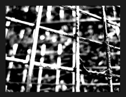 The cage. by GingerYork