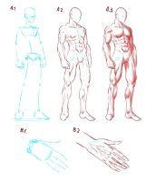 Elijah's Anatomy Guide #1 by Elyas11