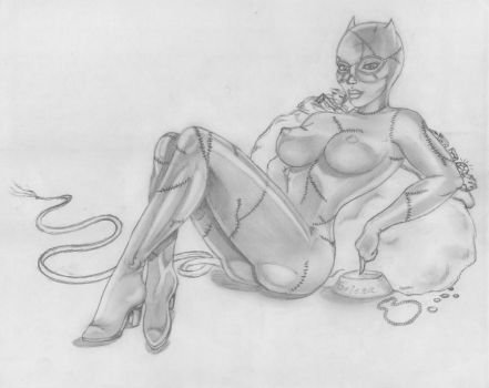 WIP: Catwoman by MoonlitLady